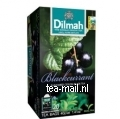 https://img.tea-mail.nl/dilmah-fv/blackcurrant.jpg