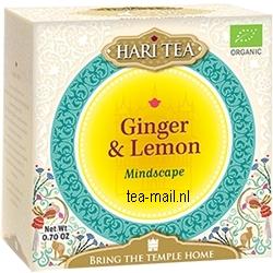 ginger & lemon   mindscape