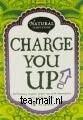 charge you up thee eko